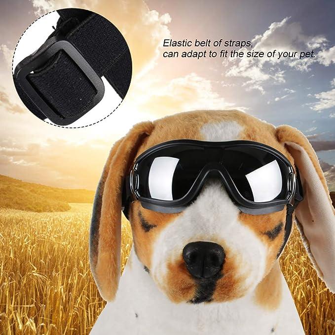 aa73666ca4 Haofy Gafas de Sol para Perros Gafas para Mascotas Impermeable a Prueba de Viento  Perros