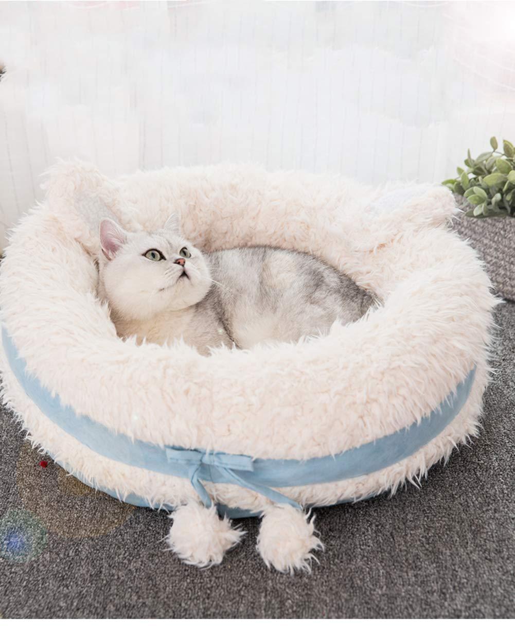 Amazon.com: CLEAVE WAVES - Cama para perro, para mascotas ...