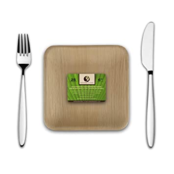 Disposable Eco Palm Paper Plates Square Compostable Biodegradable Heavy Duty Small Salad Hors D  sc 1 st  Amazon.com & Amazon.com: Disposable Eco Palm Paper Plates: Square Compostable ...