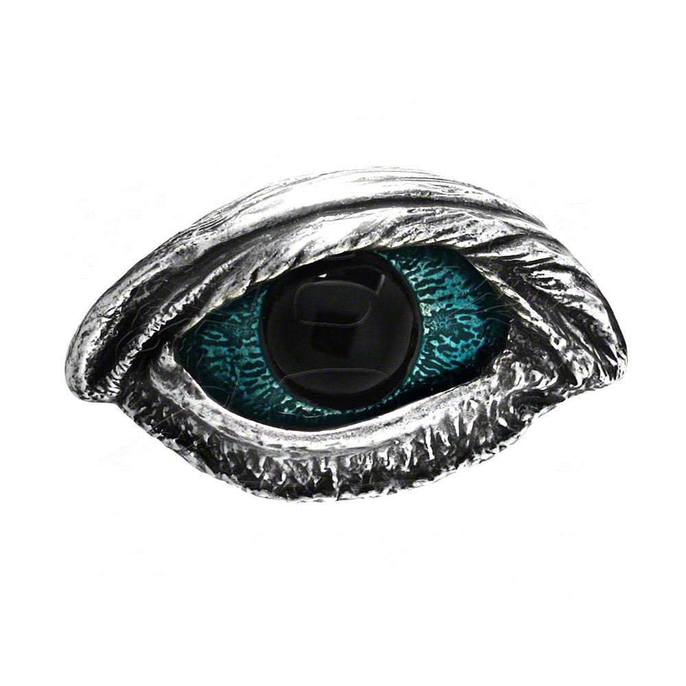 Alchemy Gothic Edgar Allan Poe The Vulture's Eye Belt Buckle B83