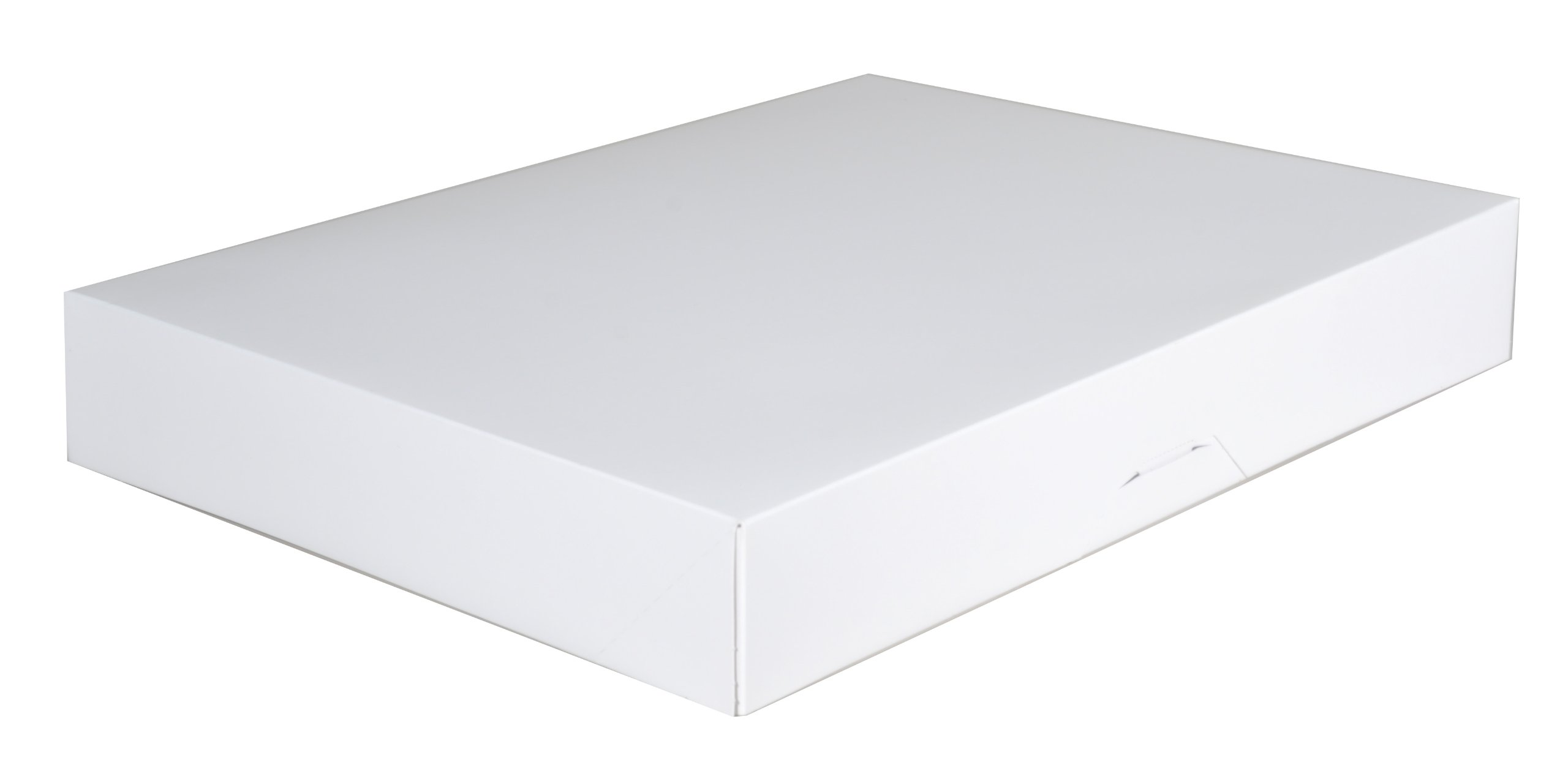 Southern Champion Tray 1239 Paperboard White Bakery Donut Box, 15'' Length x 11-1/2'' Width x 2-1/4'' Height (Case of 100)