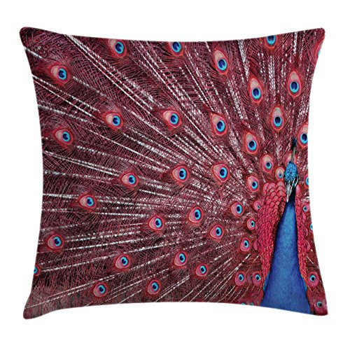 Peacock Displays - Ambesonne Peacock Throw Pillow Cushion Cover, A Beautiful Male Displays His Plumage Majestic Surreal Wildlife Theme Artwork, Decorative Square Accent Pillow Case, 16 X 16 inches, Burgundy Blue