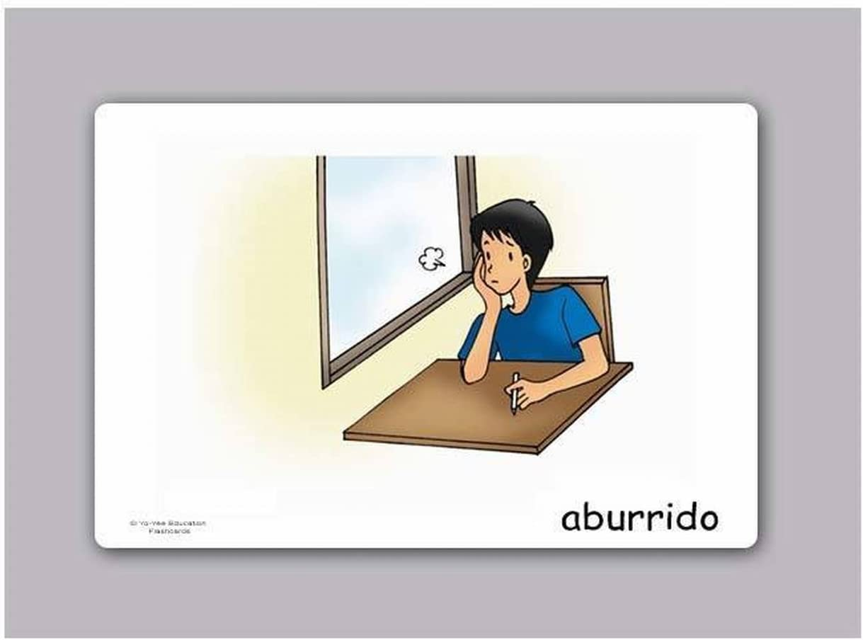 Yo-Yee Flashcards Tarjetas con Ilustraciones para el fomento del Aprendizaje del Idioma - Sentimientos - para Las Clases de españolen guarderías, escuelas Infantiles y educación Primaria: Amazon.es: Juguetes y juegos