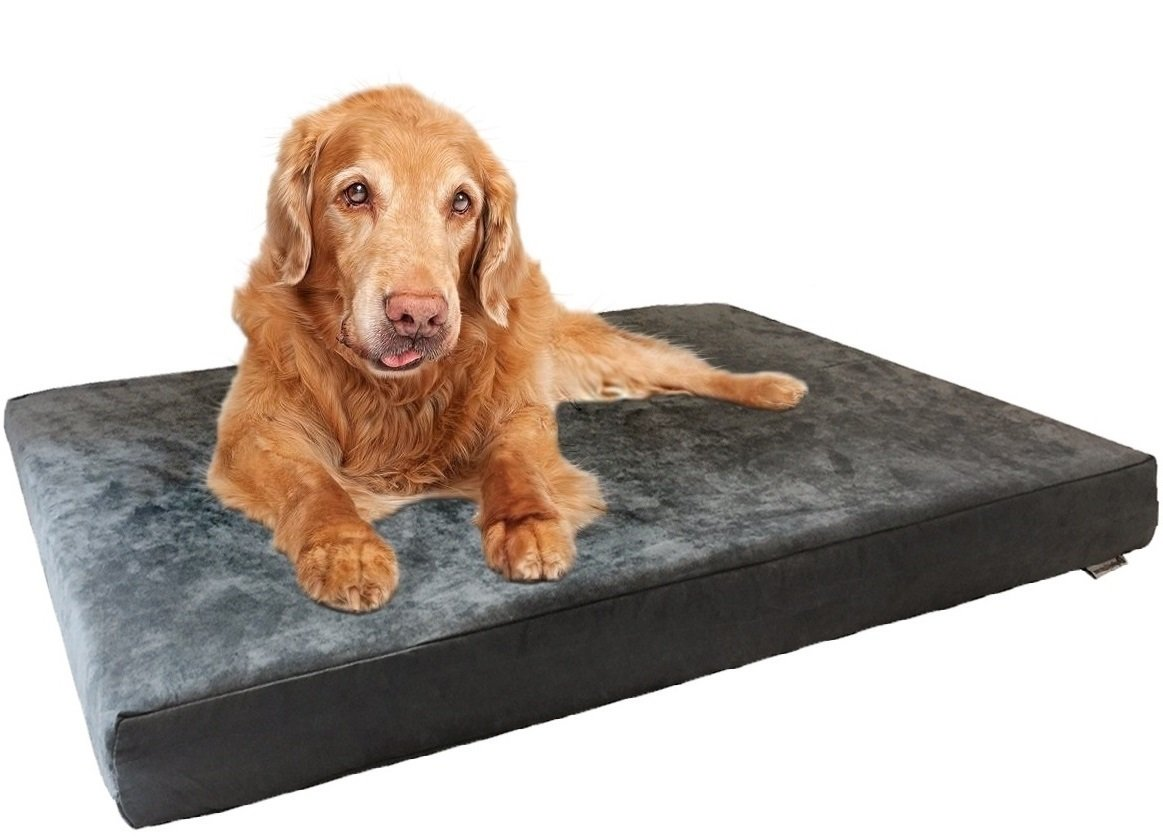 Dogbed4less Premium Orthopedic Memory Foam Dog Bed with Gray Suede Cover, Waterproof Liner and Extra Replacement Case, Gel Cooling Jumbo 55X47X4 Inch Pad for XL Pet