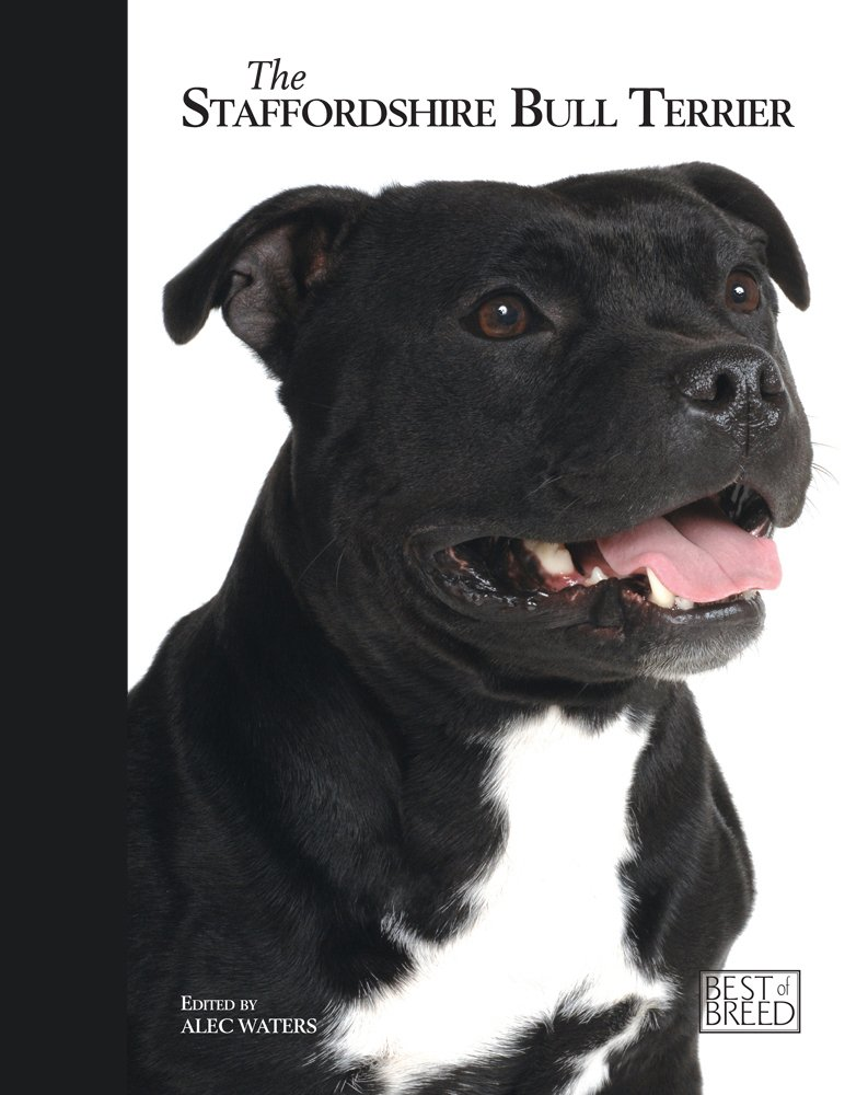 Staffordshire Bull Terrier - Best of Breed: Amazon.co.uk: Alec Waters:  9781906305192: Books