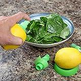 Home-X Citrus Sprayer Set