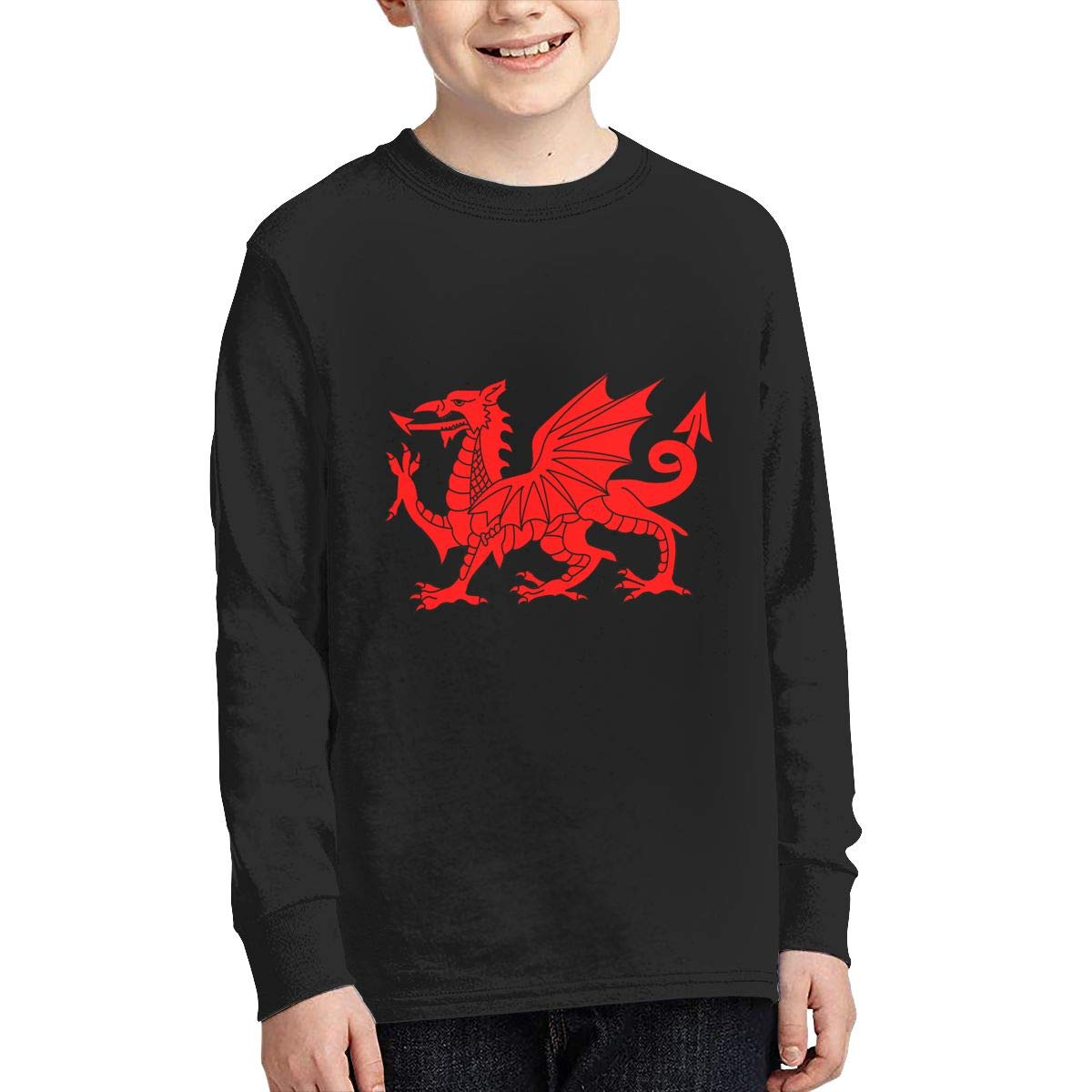 Welsh Dragon Teens Boy Shirt Girl T Shirt Fashion Cute Long Sleeve Round Neck Teen Shirt Cotton 100% BCFJANC
