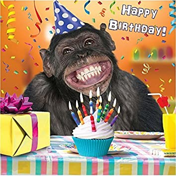 3D Holographic Birthday Card Funny Cute Monkey Cupcake Presents Amazoncouk Office Products