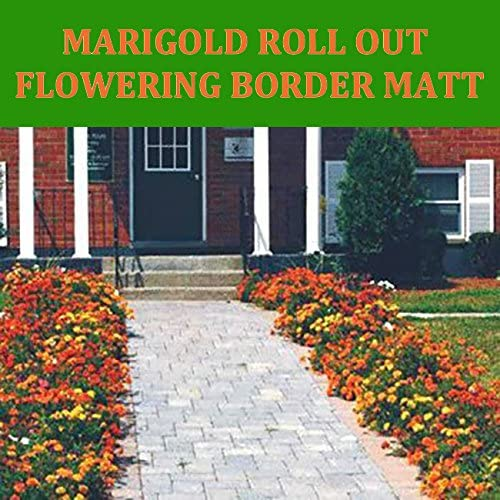 Amazon Com Enroot Roll And Grow Flowering Border Mat Marigold