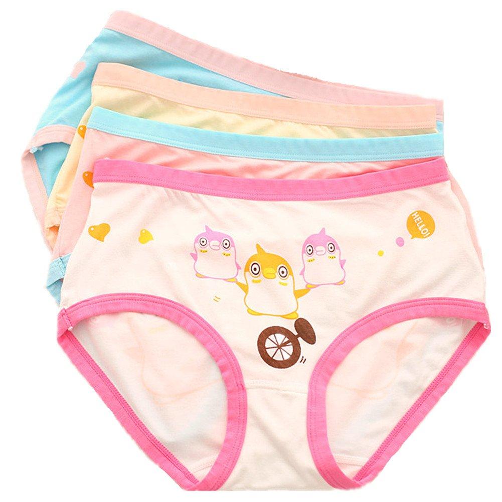 Little Girls Cotton Briefs Underwear Super Soft Panties 5-Pack CzBonjour