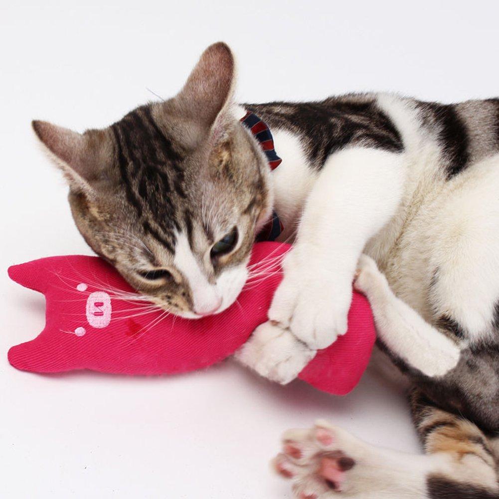 Carter Ken Funny Cartoon Stampa Pet Cat macinare Denti mordere Scratch Peluche con Catnip