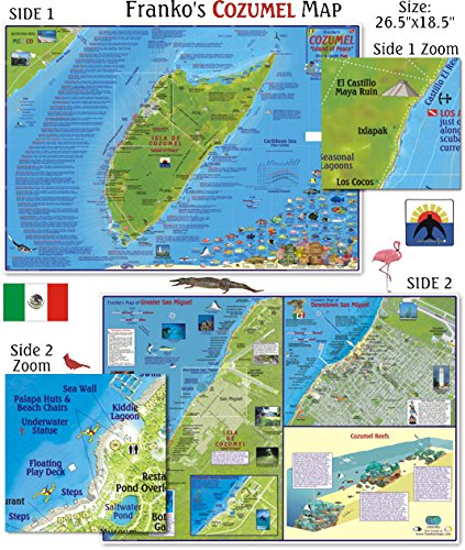 Amazon Com Franko Maps Cozumel Dive Map For Scuba Divers And