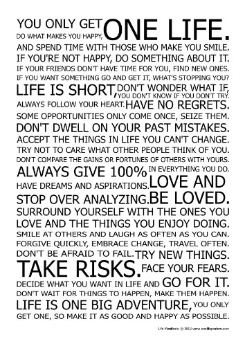 life manifesto poster the world famous original