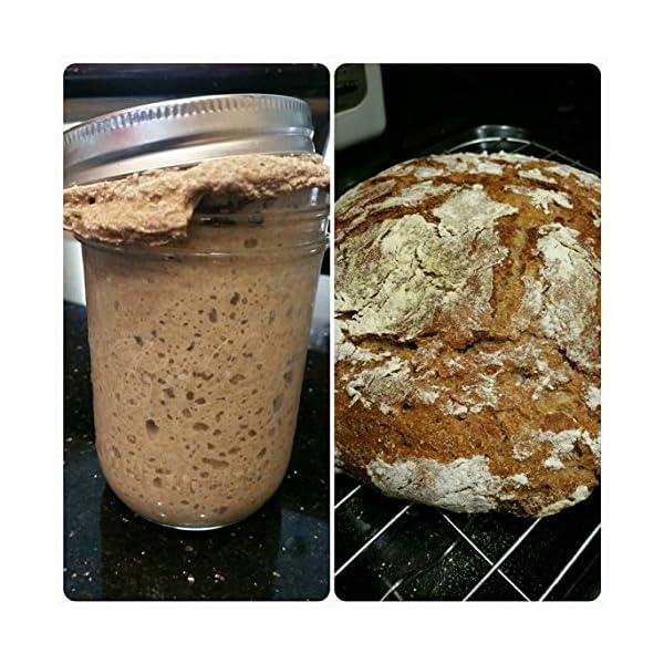 lievito madre naturale genuino, Lake District da 38 anni, lievito di birra biologico, lievito per pane di segale, farina… 4 spesavip