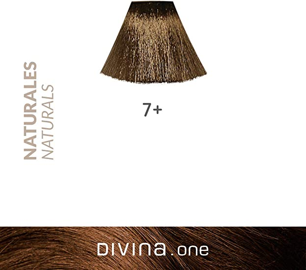 Eva Professional Hair Care Tinte Profesional Divina N.7+ 60 ml ...
