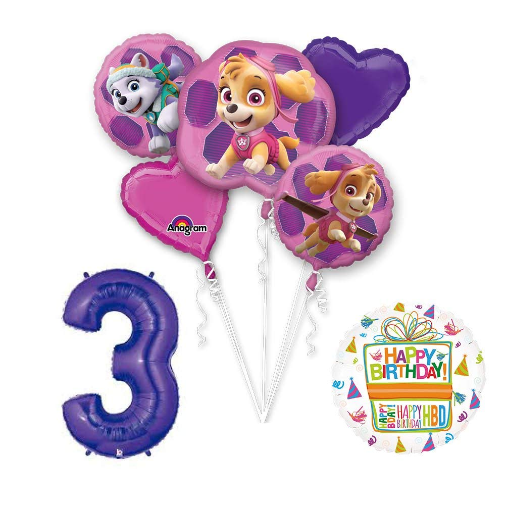 Amazon PAW PATROL SKYE EVEREST 3rd Birthday Party Balloons Decoration Supplies Chase Ryder By Mayflower Products Toys Games