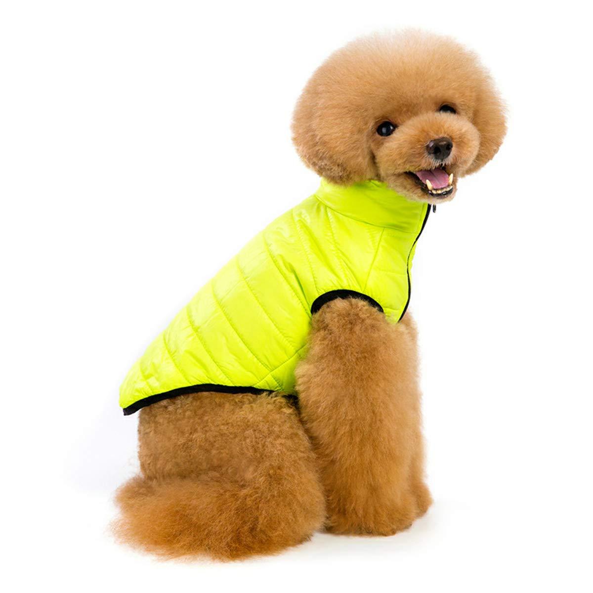 PETCUTE Cappotto invernale cane,abbigliamento invernale per cani, gilet imbottito caldo per cane, giacca cagnolina accogliente