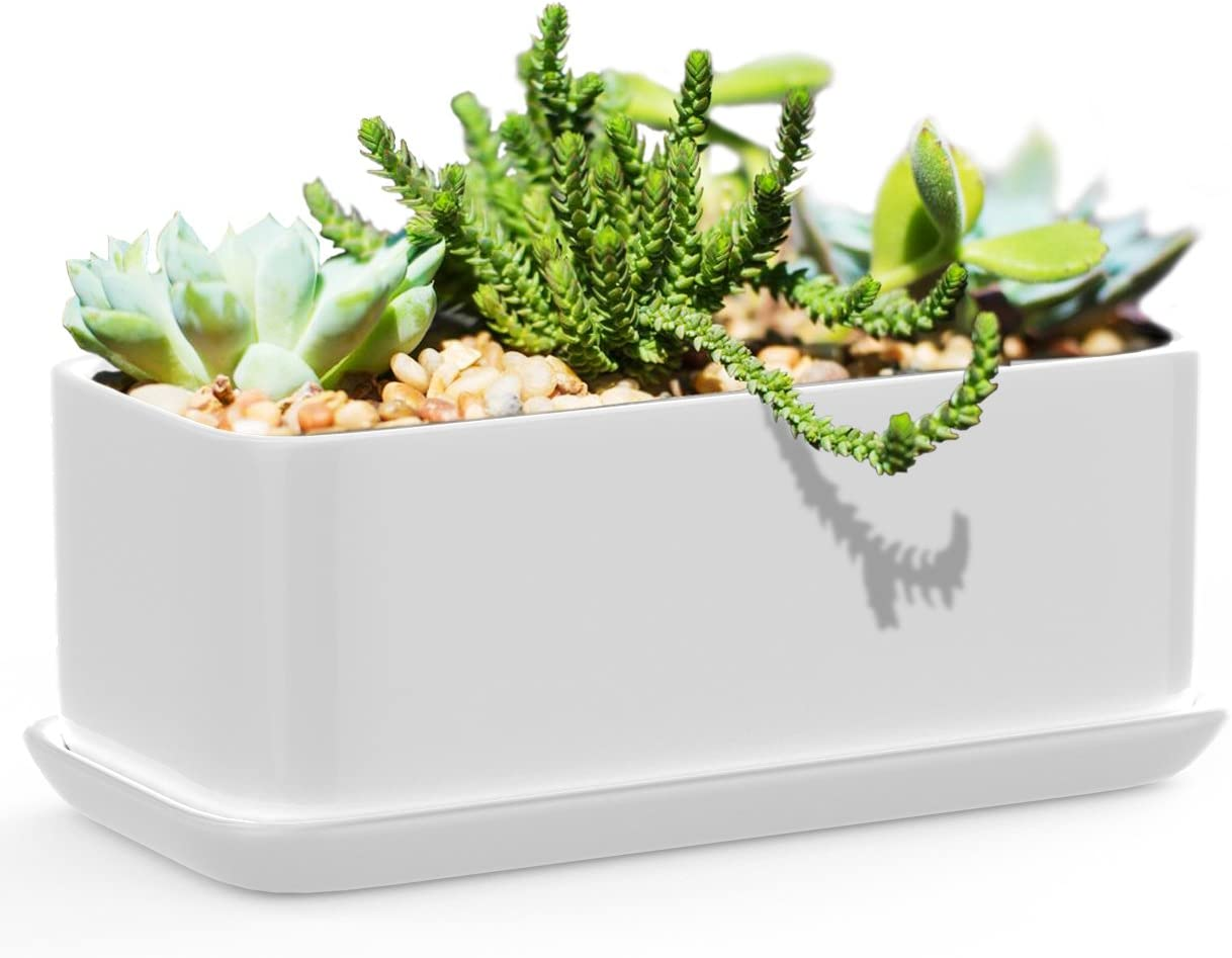 Succulents Choice 10 inch Rectangular White Ceramic Succulent Planter Modern Design Pot Includes Fitted Saucer With Drain Holes