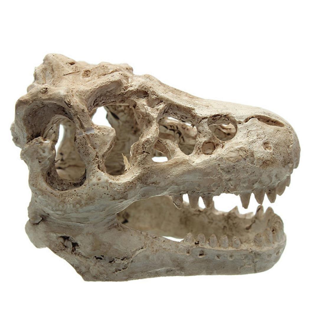 IEason Halloween Aquarium Decorative Resin Skull Crawler Dragon Lizards Decoration