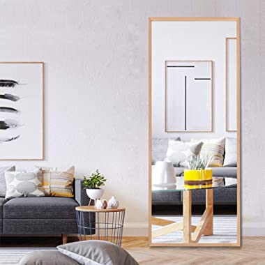 NeuType 65 x22  Full Length Mirror Standing Hanging or Leaning Against Wall, Large Rectangle Bedroom Mirror Floor Mirror Dressing Mirror, Solid Wood Frame Wall-Mounted Mirror