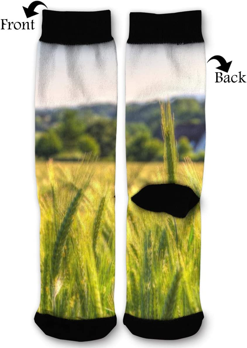 BLongTai Knee High Compression Socks Rice Field for Women and Men Sport Crew Tube Socks