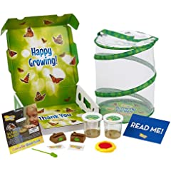 5298be027 Amazon.com: Science - Learning & Education: Toys & Games ...