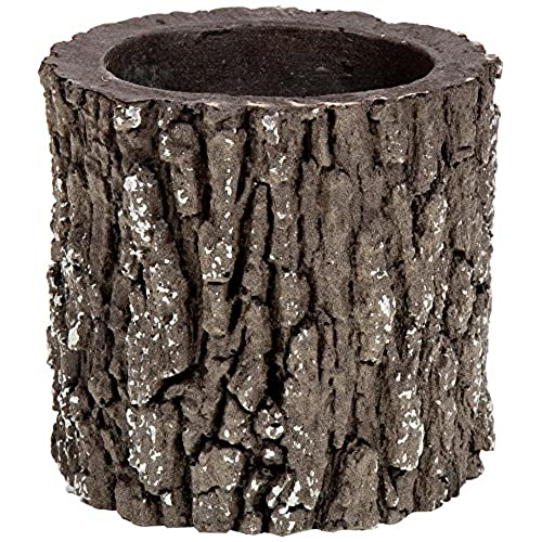 Tree Stump: Tree Stump Decor: Amazon.com