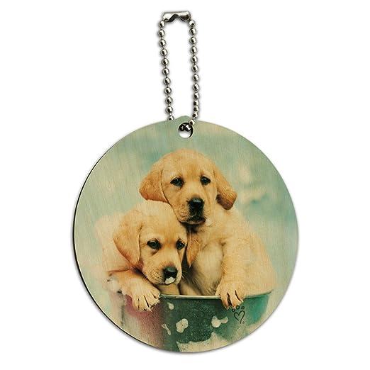 Amazoncom Labrador Retriever Puppies Dogs Bath Bubbles Bucket