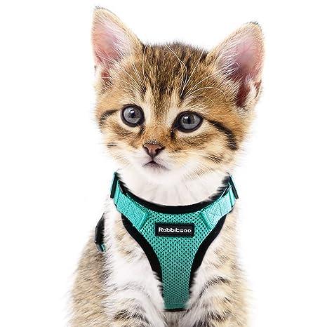 Amazon.com: Arnés para gatos para caminar, a prueba de ...