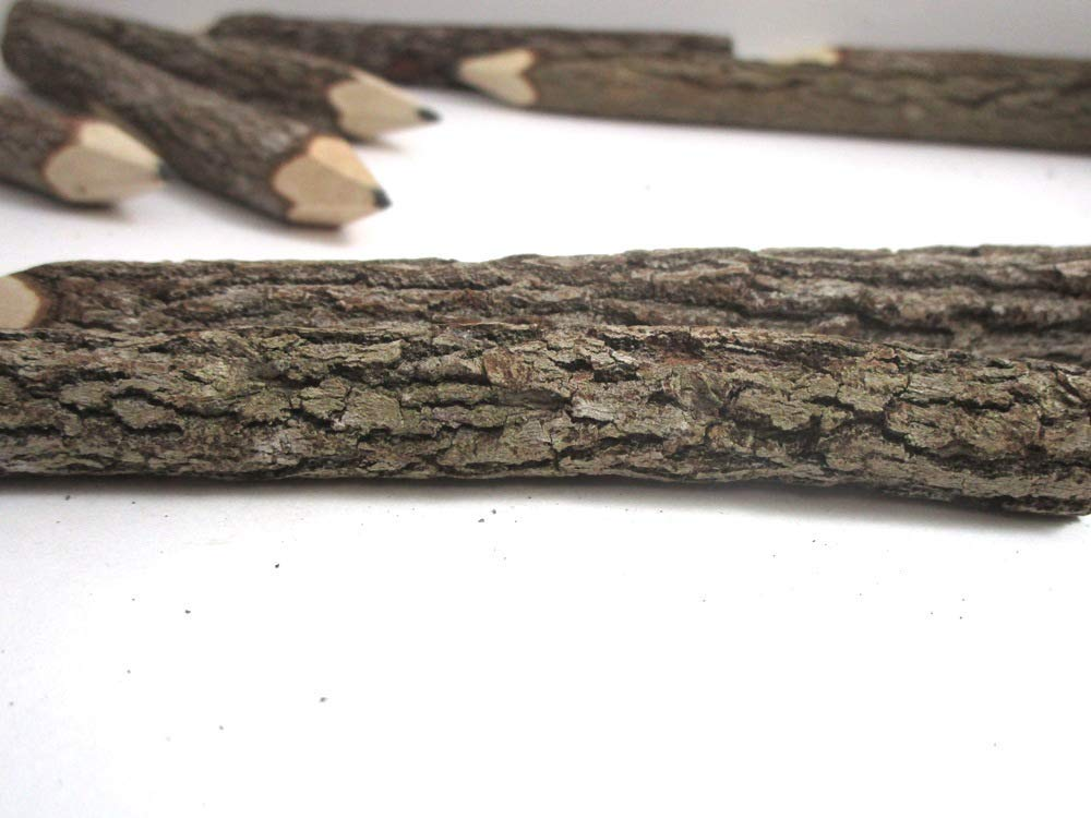 Graphite Wooden Branch Twig Pencil 5 Inches (12) by World Buyers (Image #2)