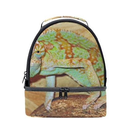 08d34ca96046 Amazon.com - HEOEH Reptile Lizard Stare Lunch Bag Insulated Lunch ...