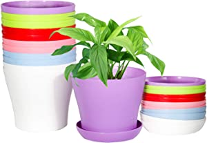 Plant Pots Indoor, 5.5 inch Flower Pots with Drainage and Saucers, Colorful Plastic Nursary Starting Pots for Plants, Set of 12