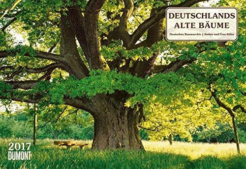 Deutschlands alte Bäume 2017 - Broschürenkalender - Wandkalender - mit Schulferienterminen - Format 42 x 29 cm