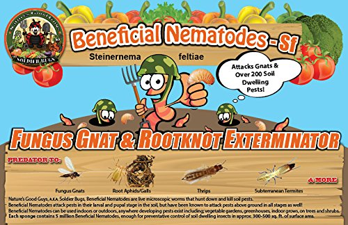25-million-live-beneficial-nematodes-sf-fungus-gnat-rootknot-gall-exterminator
