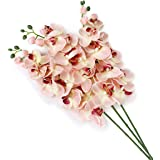 Pixnor artificiale fiore pianta simulazione farfalla orchidea Home Decoration