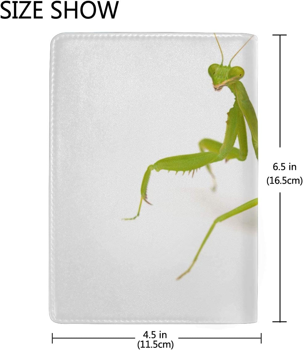 A Wounded Little Mantis Blocking Print Passport Holder Cover Case Travel Luggage Passport Wallet Card Holder Made With Leather For Men Women Kids Family