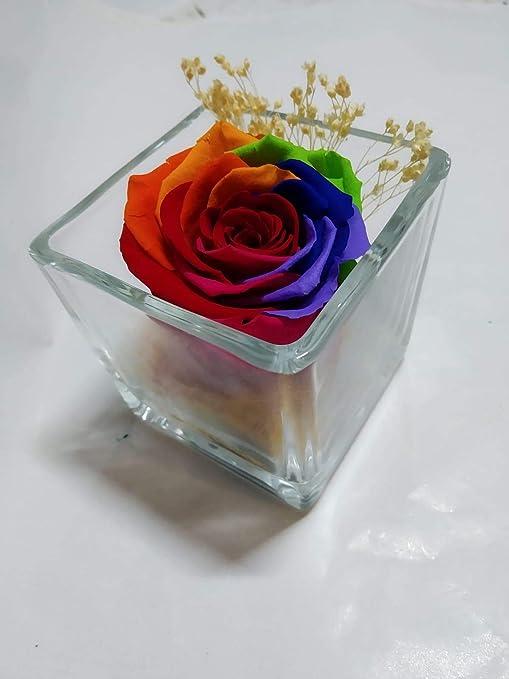 Rosa Arco Iris Multicolor preservada. Gratis tu ENVÍO. Rosa eterna ...