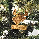 Ornament - Christmas is Coming - Raw Wood 4x3in