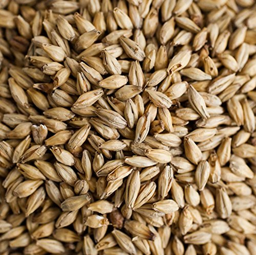 2 Row Barley (Briess Organic 2-Row Brewers Malt - 5 LB, Uncrushed)