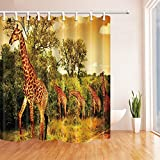 Safari Decor Shower Curtains By KOTOM Safari with Giraffe Crew with Majestic Forest at Sunset in Kenya Bath Curtains, 72X72 Inches