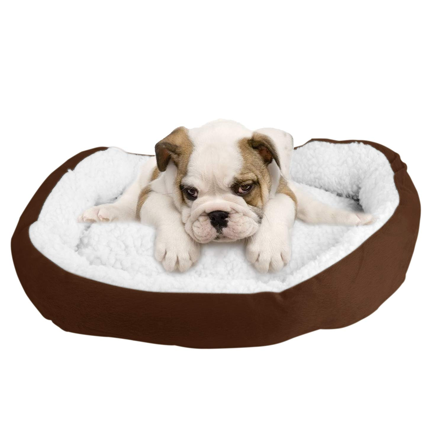 Brown TeqHome Small Dog Bed, Puppy Orthopedic Kennel Soft Pet Warming Beds Cat Cushion, Washable, Lamb Cashmere-Grey (Brown)