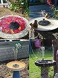 Kyerivs Birdbath Solar Fountain Pump 1.5W Circle