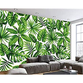 Image of Ai Ya-bihua 3D Wallpaper Modern Tropical rain Forest Plant Banana Leaf murals Living Room Bedroom TV Background Wallpaper Home and Kitchen