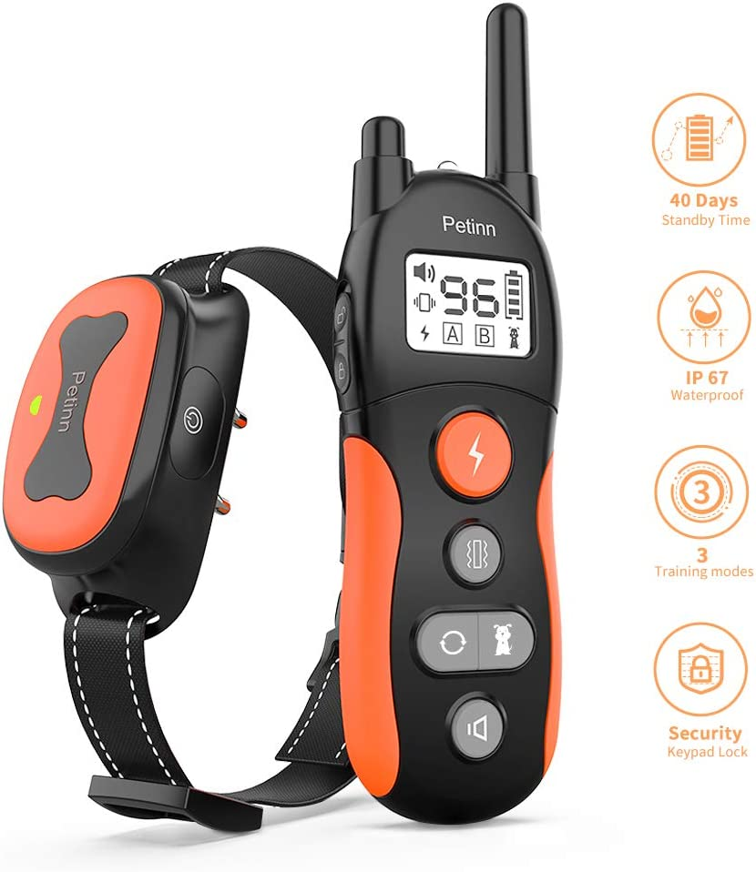 Amazon Promo Code for Dog Training Collar