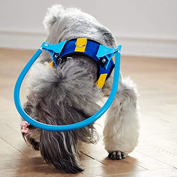Arnés para Perro ciego Anillo de protección animal Círculo ...
