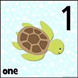 Arty Ocean Number Frieze- Bright Simple Number Cards 0-10 - Laminated
