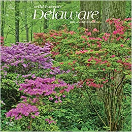 Delaware Wild Scenic 2020 12 X 12 Inch Monthly Square Wall Calendar Usa United States Of America Southeast State Nature Browntrout Publishers Inc Browntrout Publishers Editing Team Browntrout Publishers Design Team