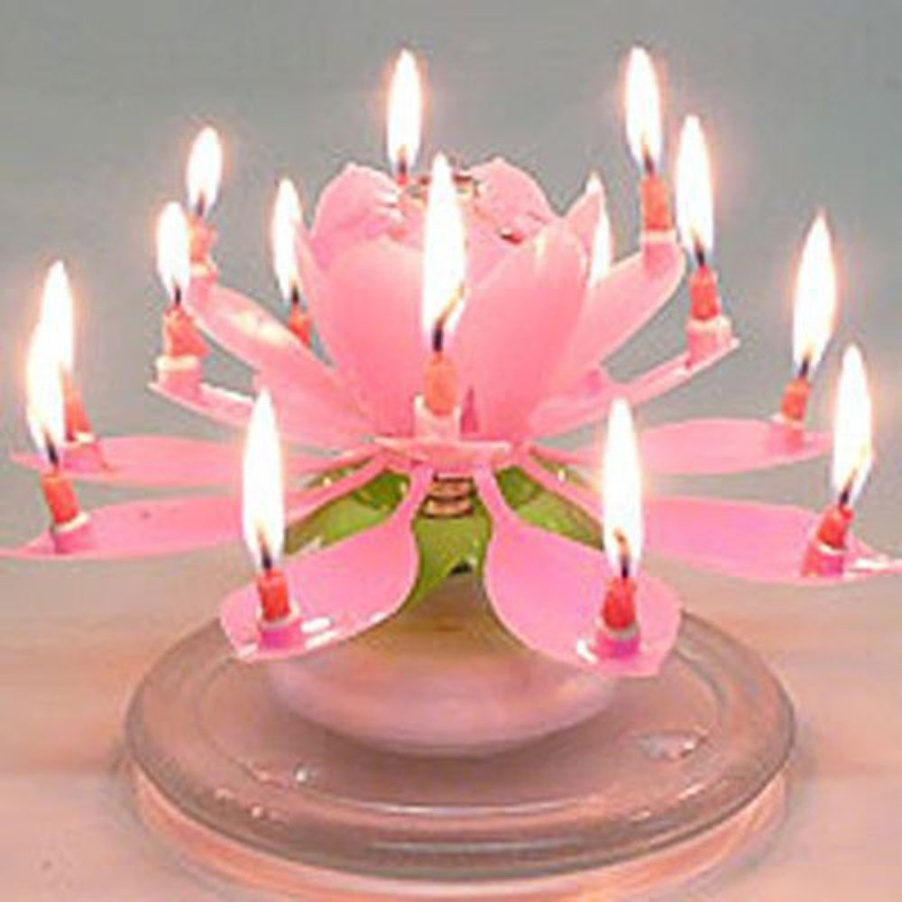 Amazing Birthday Candle Flower Gallery Flower Wallpaper Hd