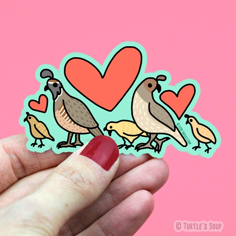 Gambel Quail Family Bird Sticker Cute Decals for Kids Wildlife Stickers Water Bottle Decals Turtles Soup