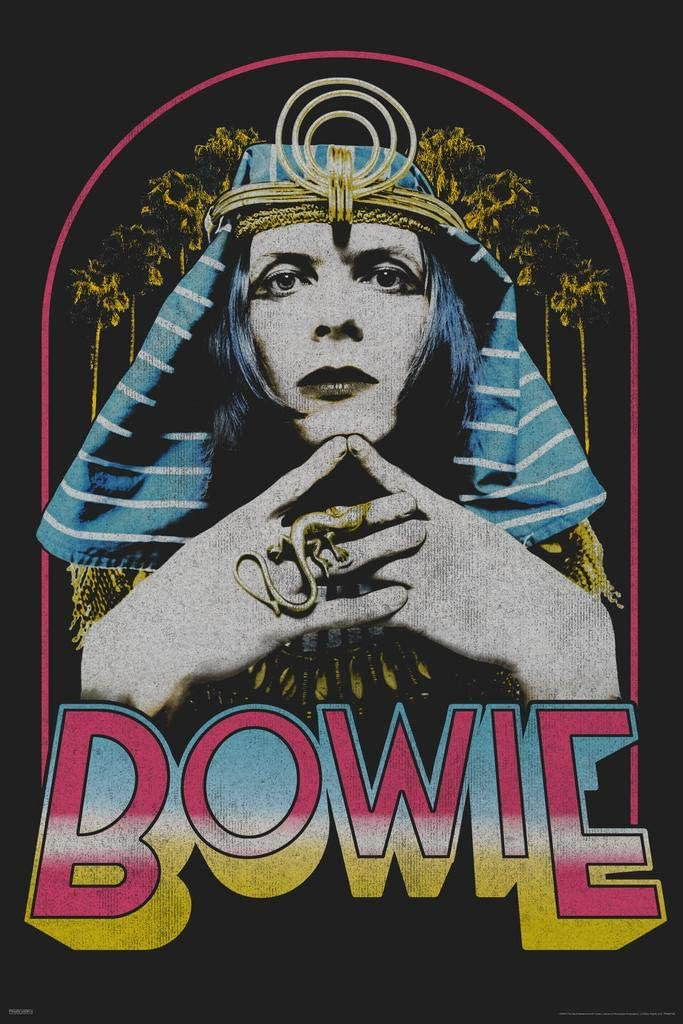 Pyramid America David Bowie as The Sphinx 1969 Retro Vintage Glam Rock Music Cool Wall Decor Art Print Poster 24x36